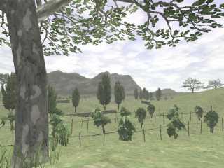 Rolanberry Fields